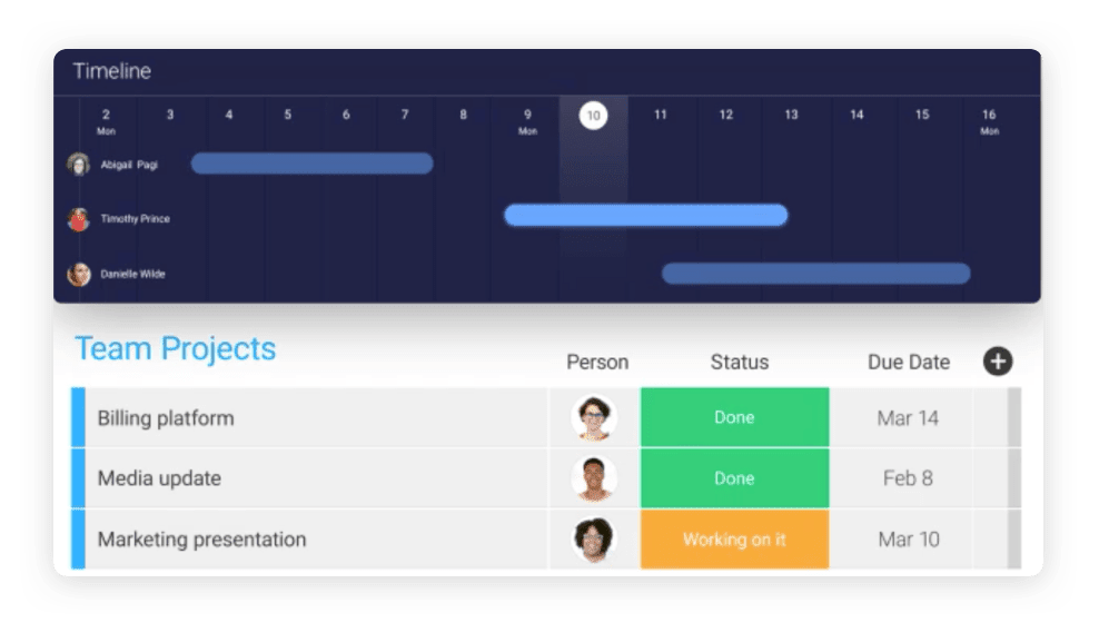 Team management software with Gannt view