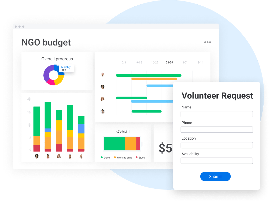 Budget dashboard and volunteer form