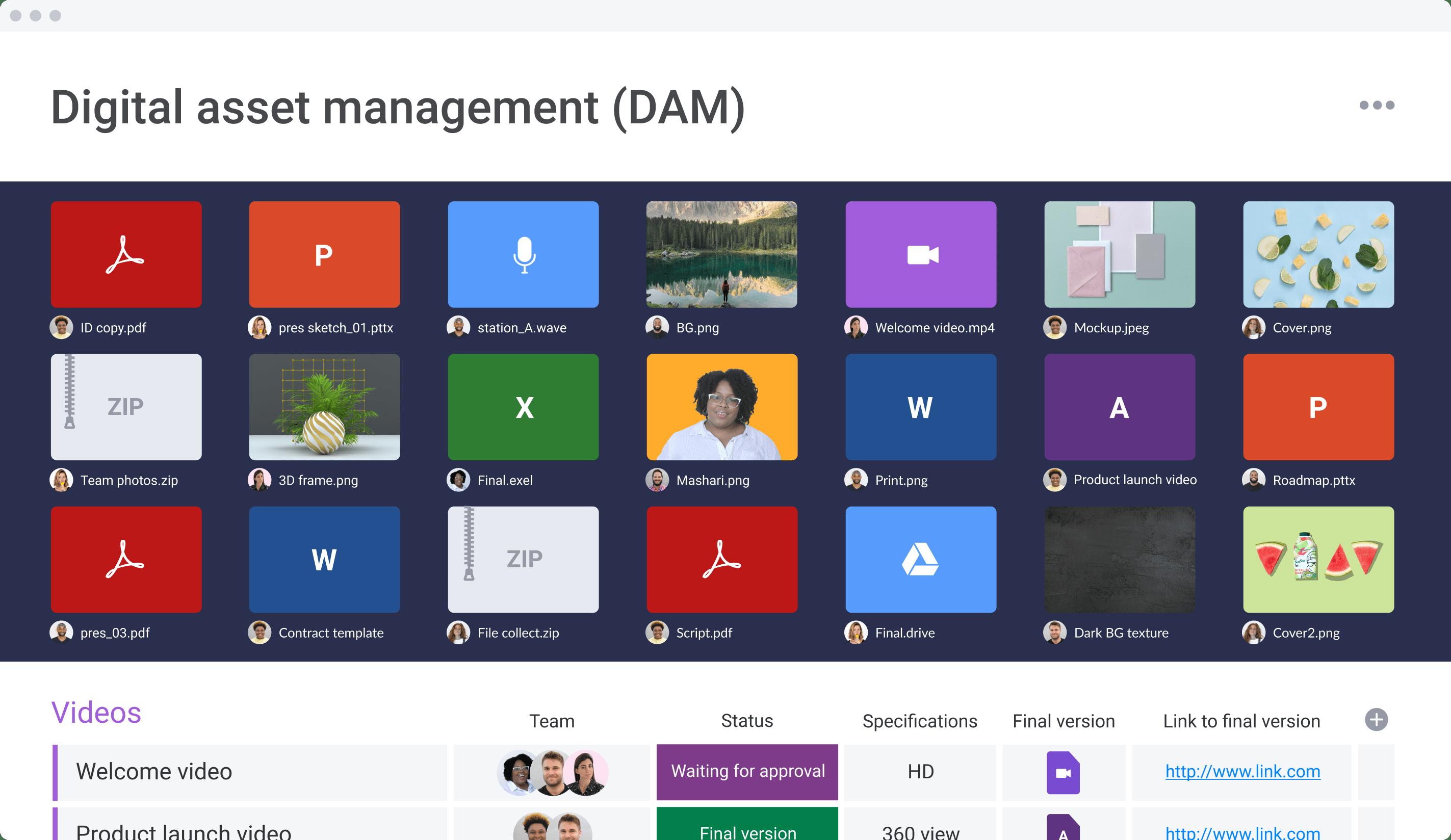 digital asset management dam first